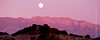 Pink Moment Moonrise Ojai Valley  Color of Ojai, Light &amp; Spirit